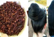 وصفة الثوم والقرنفل لعلاج تساقط الشعر