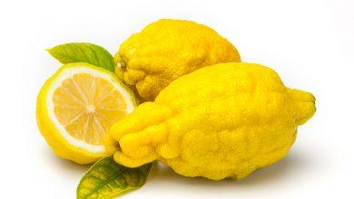 فوائد فاكهة الترنج الصحية