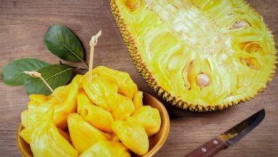 تعرف على فوائد فاكهة الكاكايا العجيبة
