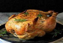 فوائد جلد الدجاج البلدي
