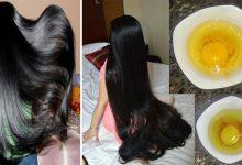 ماسك البيض لتطويل الشعر بطريقة خرافية