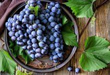 أبرز فوائد العنب الأسود