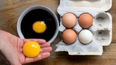 مميزات وفوائد صفار البيض