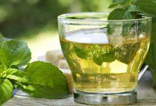 الشاي الأخضر وسرعة عملية الايض في الجسم