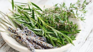 علاج التهاب مفصل الكوع بالأعشاب