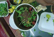 علاج الجروح المتقيحة بالأعشاب