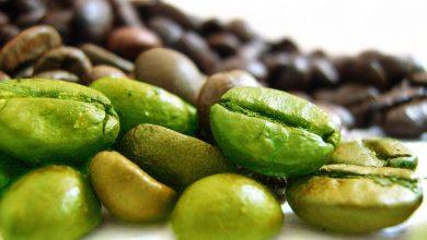 فوائد القهوة الخضراء الصحية