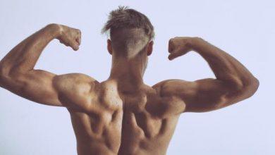 كيفية بناء الكتلة العضلية