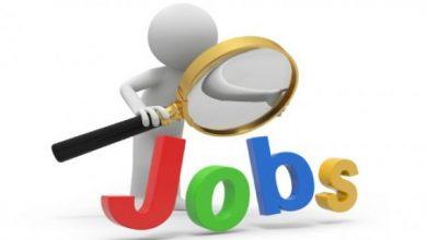 بحث عن مهارات البحث عن وظيفة
