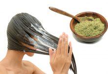 وصفة السدر والبيض لمنع تساقط الشعر وتكثيفه