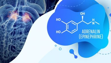 الفرق بين الدوبامين والادرينالين