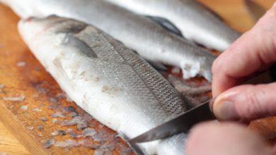 تفسير حلم تنظيف السمك بالتفصيل