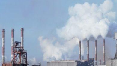 دور الدولة في القضاء على التلوث