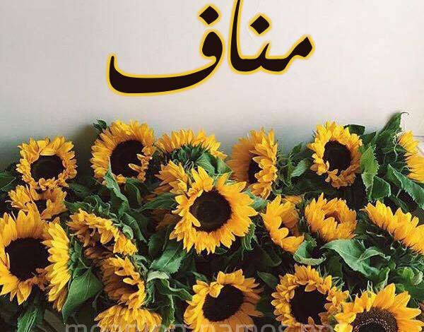 معنى اسم مناف Manaf وصفات حامله