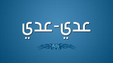 معنى اسم عدي وصفات حامله