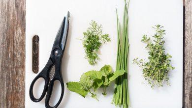 أنواع المقصات في المطبخ واستخداماتها