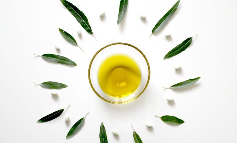 أهمية مستخلص أوراق الزيتون للشعر