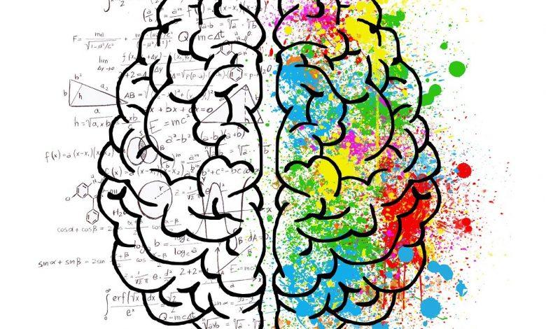 اضطرابات العقد القاعدية وتأثيرها على وظائف الجسم