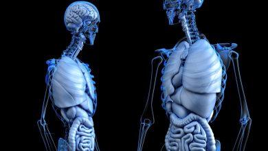 الفحص السريري وعلاج الانخراط في الأوعية الدموية