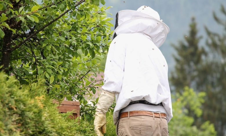 تقسيم المبيدات حسب تسميتها على طوائف نحل العسل