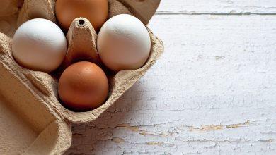طريقة اختبار نضارة البيض في التصنيع الغذائي