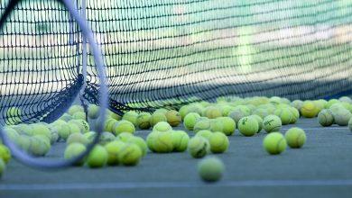 عدد حكام كرة التنس الأرضي