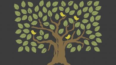 قصة الشجرة القوية