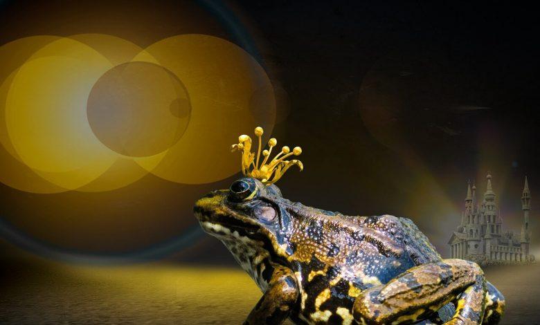 قصة الملك الضفدع أو هنري الحديد – The Frog-King or lron Henry