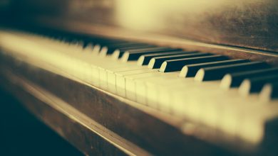 كلمات أغنية طول عمري أحبك