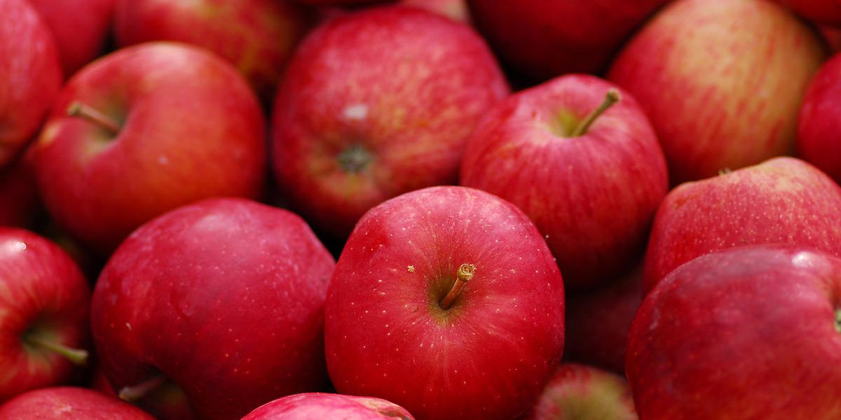 كم عدد السعرات الحرارية في التفاح