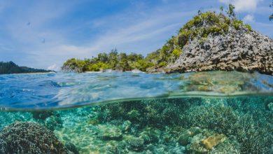 ماهيّة أعالي البحار في القانون الدولي؟
