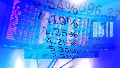 ما هي أهمية الربحية والتدفق النقدي في الشركات؟