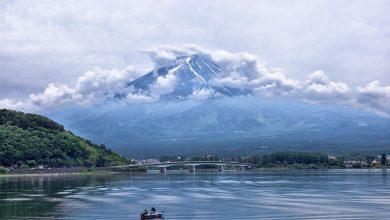 ما هي السياحة البيئية ومدى تأثيرها على الاقتصاد السياحي؟