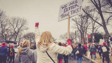 ما هي نظرية الأنظمة السياسية؟
