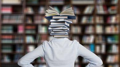 مراحل ما وراء المعرفة في النظام التربوي