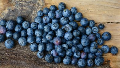 5 أنواع مفيدة ومختلفة من الفاكهة الزرقاء