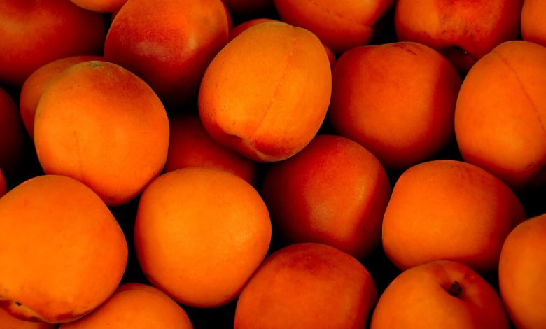 6 أنواع من الفاكهة التي تنمو في فصل الشتاء