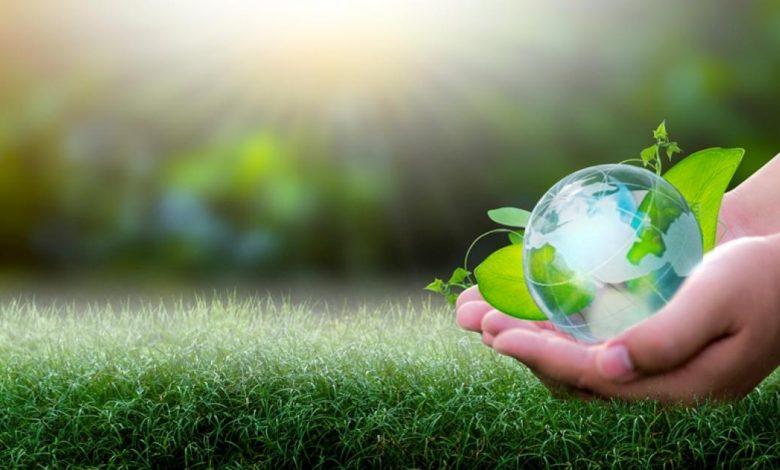أنواع البيئة الاقتصادية وعناصرها