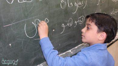 ما معنى خصخصة التعليم