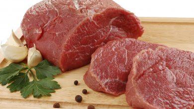 ما هو لحم الكندوز