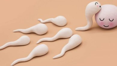 اسماء حبوب زيادة الحيوانات الذكرية عند الرجل فعالة