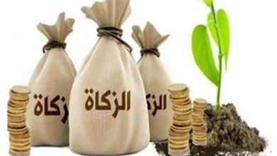 الأموال التي تجب فيها الزكاة