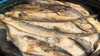تفسير رؤية السمك المملح في الحلم