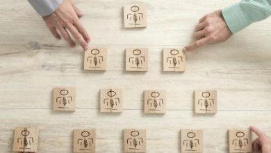الفرق بين المؤسسة والشركة والمنظمة