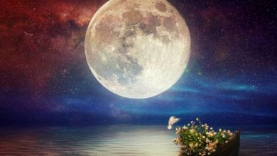 كلام جميل عن القمر والليل